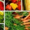 از گذشته های دور کشاورزی یکی از مهمترین راه های تأمین غذای