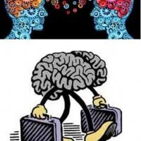 تبادل مغز ها