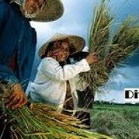 توسعه کارآفرینی روستایی